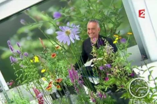 Télématin : reportage sur les vivaces à la pépinière Les Jardins d'Ollivier