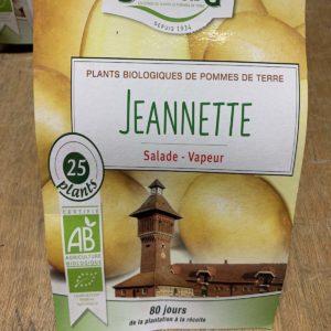 pomme de terre Jeannette bio