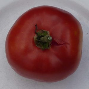 tomate bio joie de la table