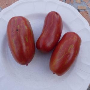Tomate Romaine Mouchetée Bio